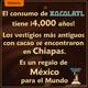 El consumo del chocolate tiene más de 4000 años en México